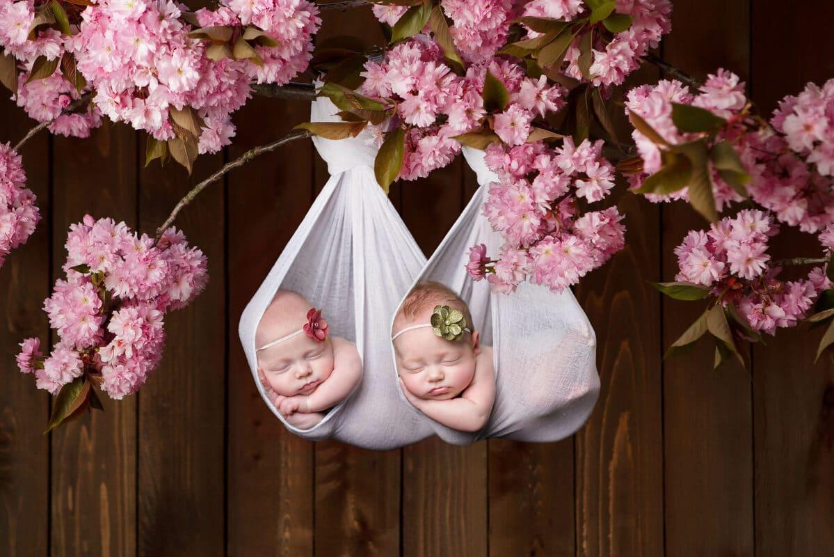 Twin on Branch Newborn Photographer Seattle Eden Bao