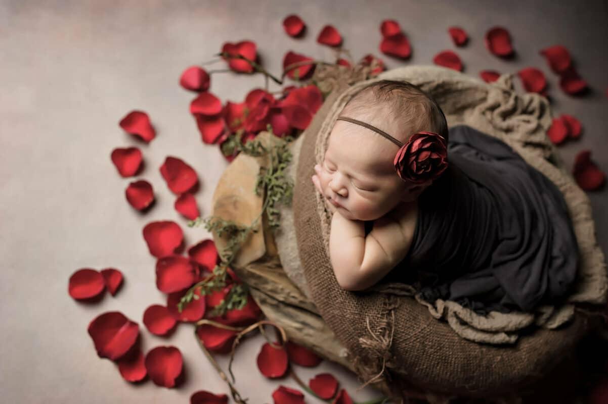 Red Roses Redmond Newborn Photographer Eden Bao