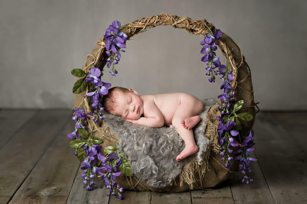 Mill Creek Newborn Photographer Wisteria Basket