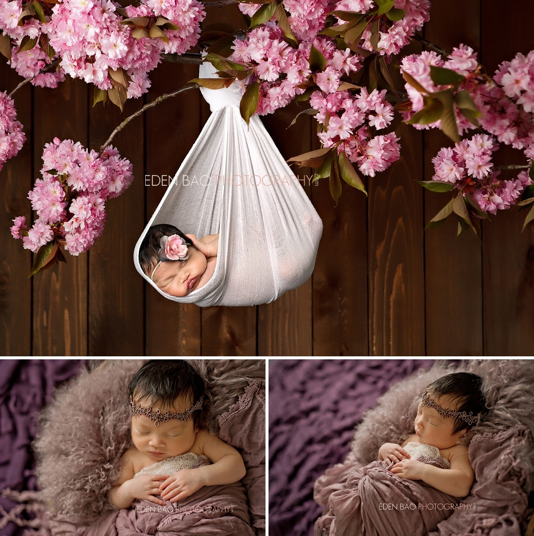Port Moody Newborn Photographer Eden Bao | Newborn girl hanging cherry blossom branch purple