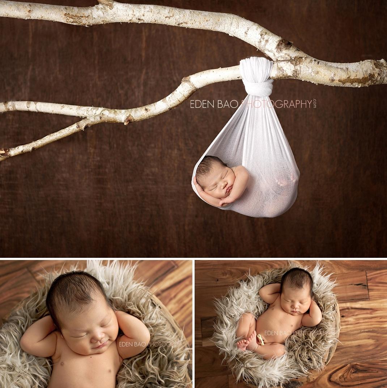 Vancouver BC Newborn Photographer Eden Bao   baby boy hanging from tree in nest on hardwood floor