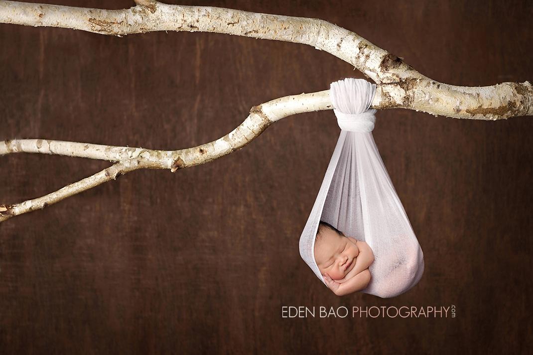 Vancouver BC Newborn Photographer Eden Bao | Newborn boy hanging from branch