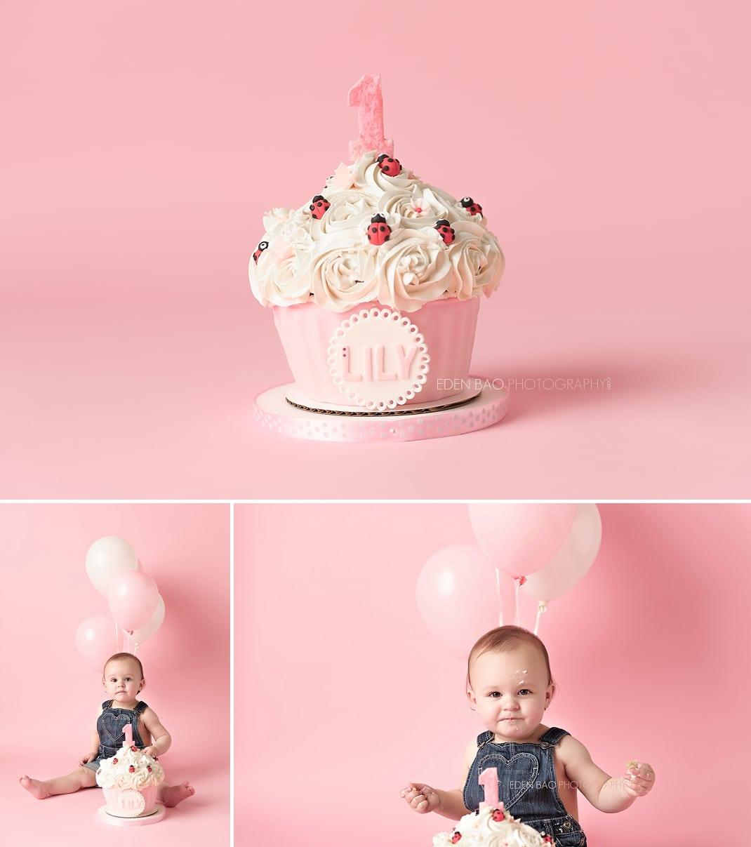Port Moody Vancouver BC Baby Photographer Eden Bao   Lily pink balloon smash cake