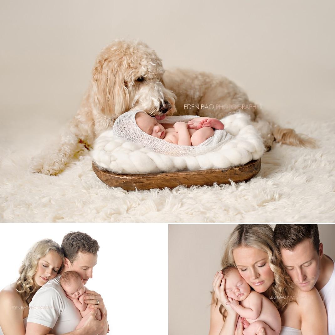 Vancouver BC Newborn Photographer Eden Bao family dog