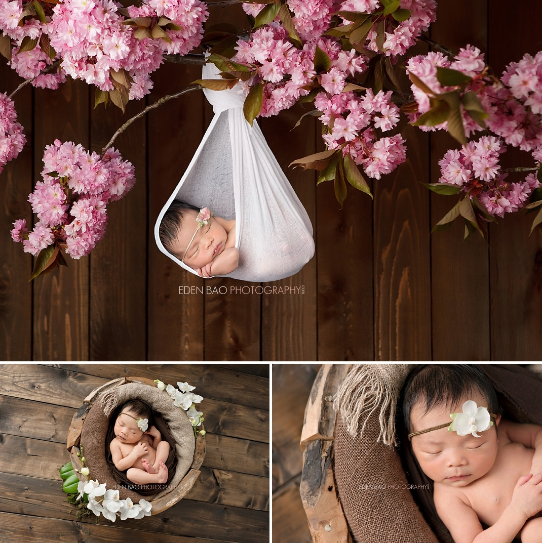 Richmond bc newborn photographer hanging from cherry blossom branch wooden bowl