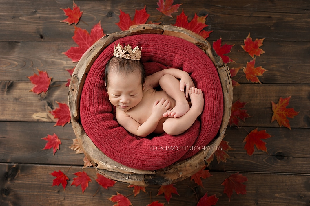 Vancouver BC Newborn Photographer red maple leaves wood bowl