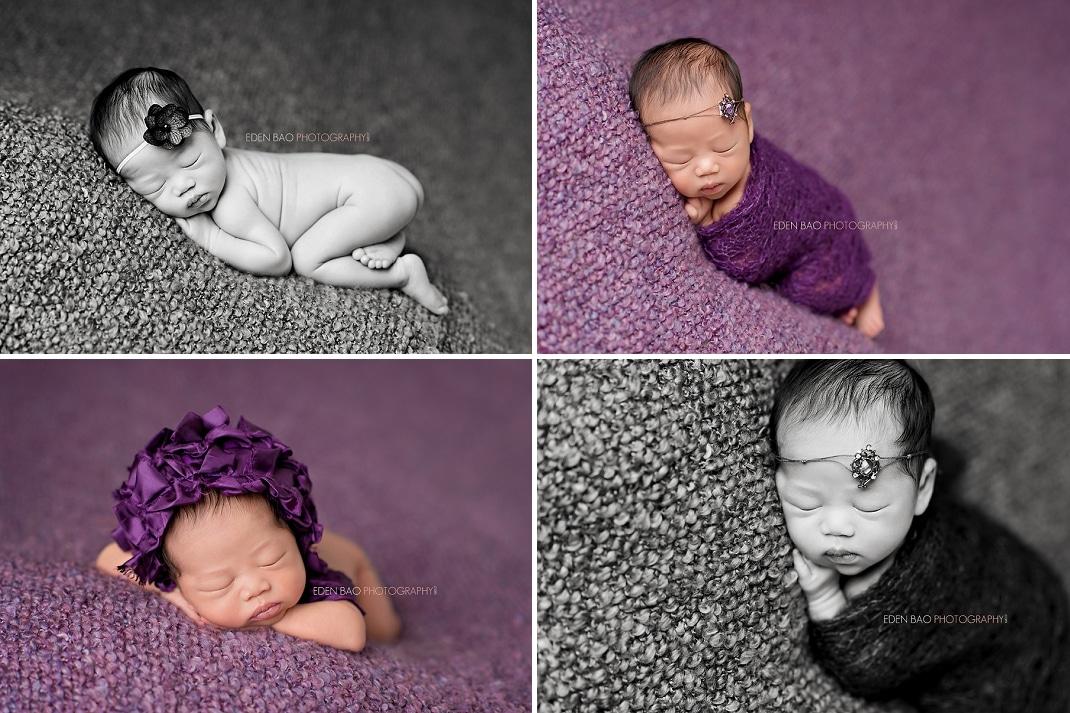Newborn Photographer Seattle purple