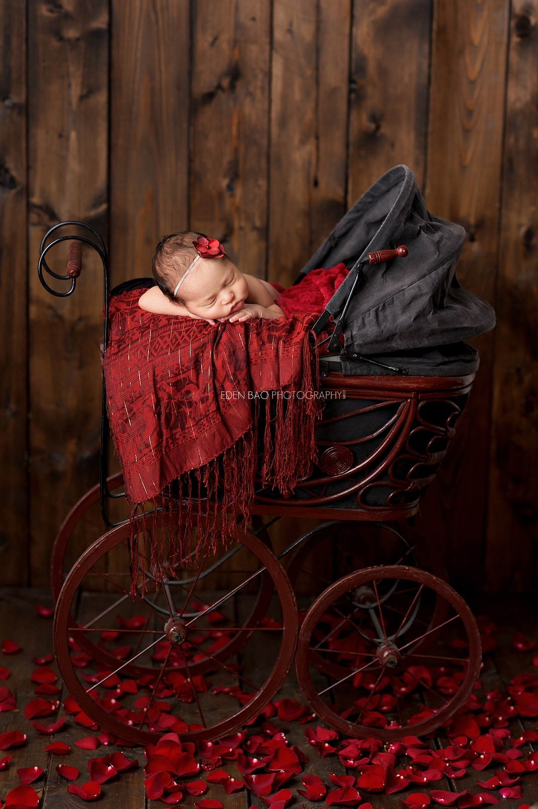 Newborn photographer Seattle red carriage