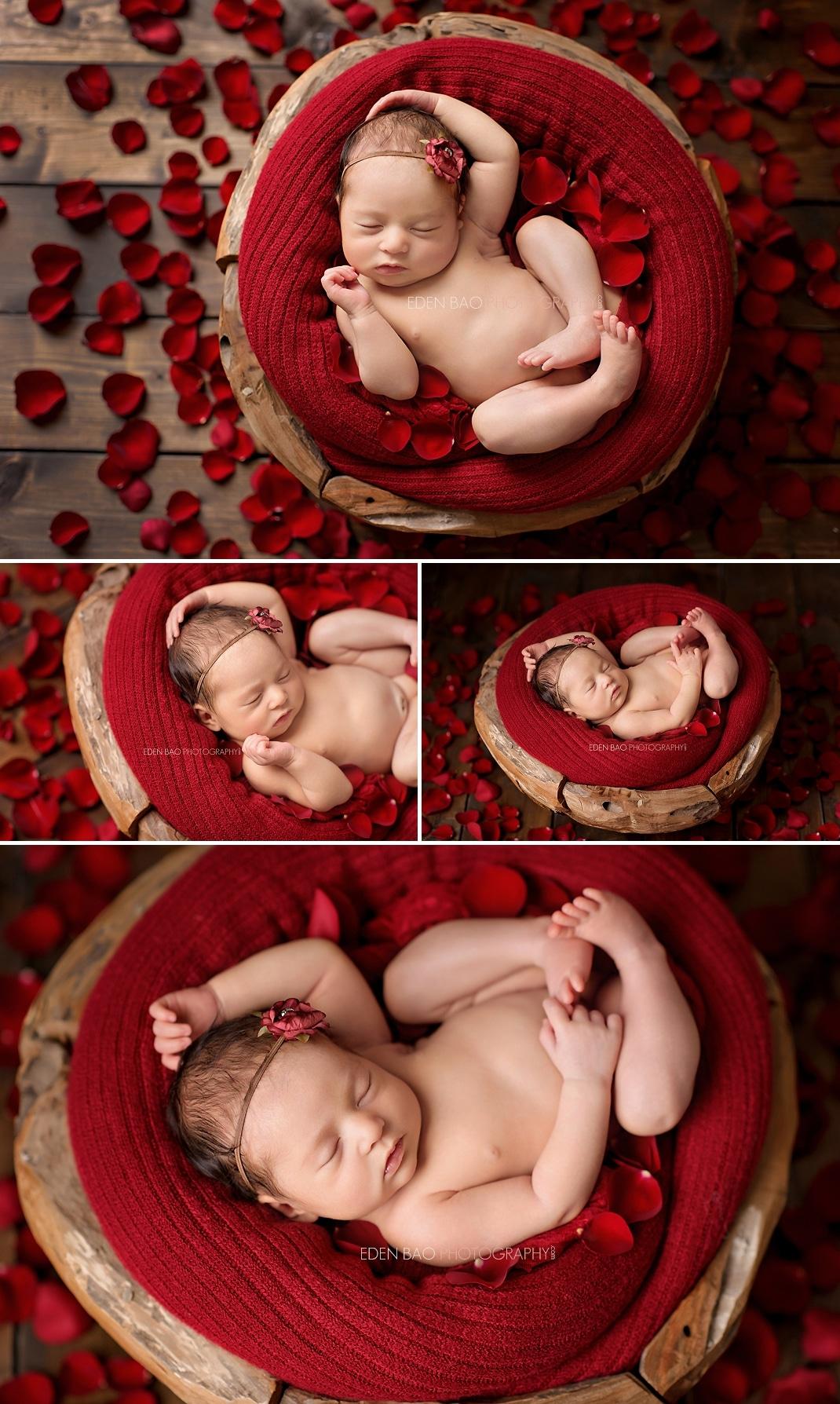 Newborn photographer Seattle red petals
