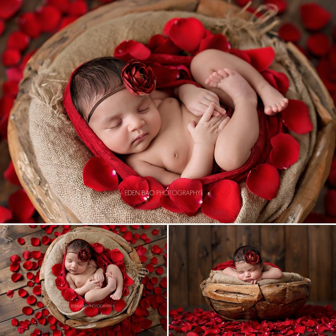 Seattle Newborn Photographer red rose petals