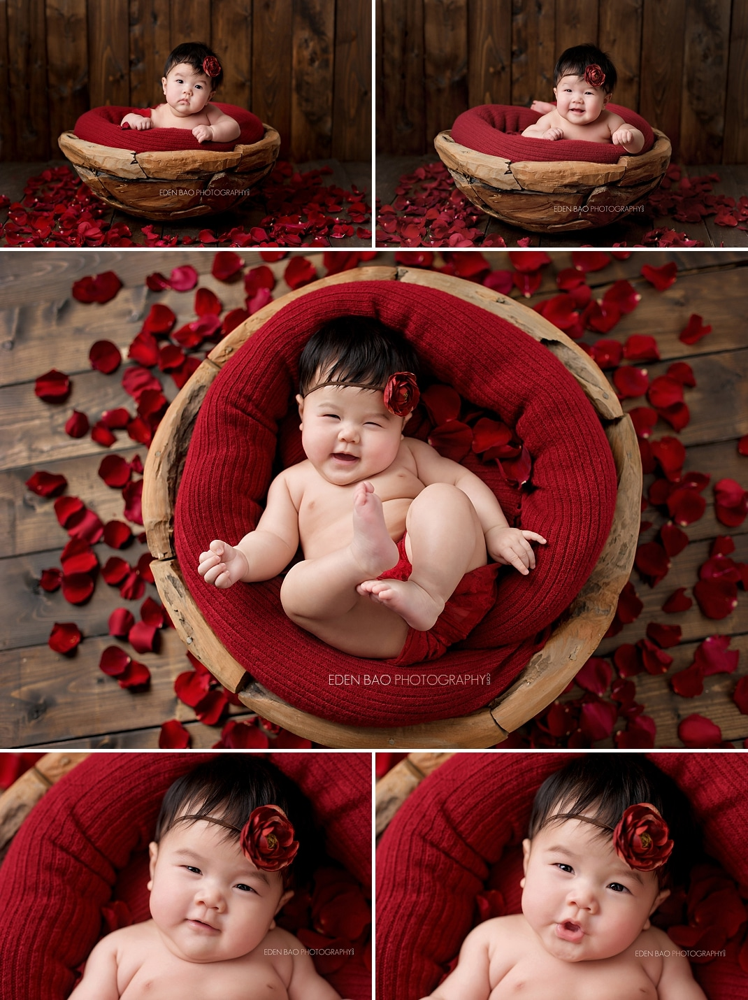 Seattle Baby Photographer red rose petals