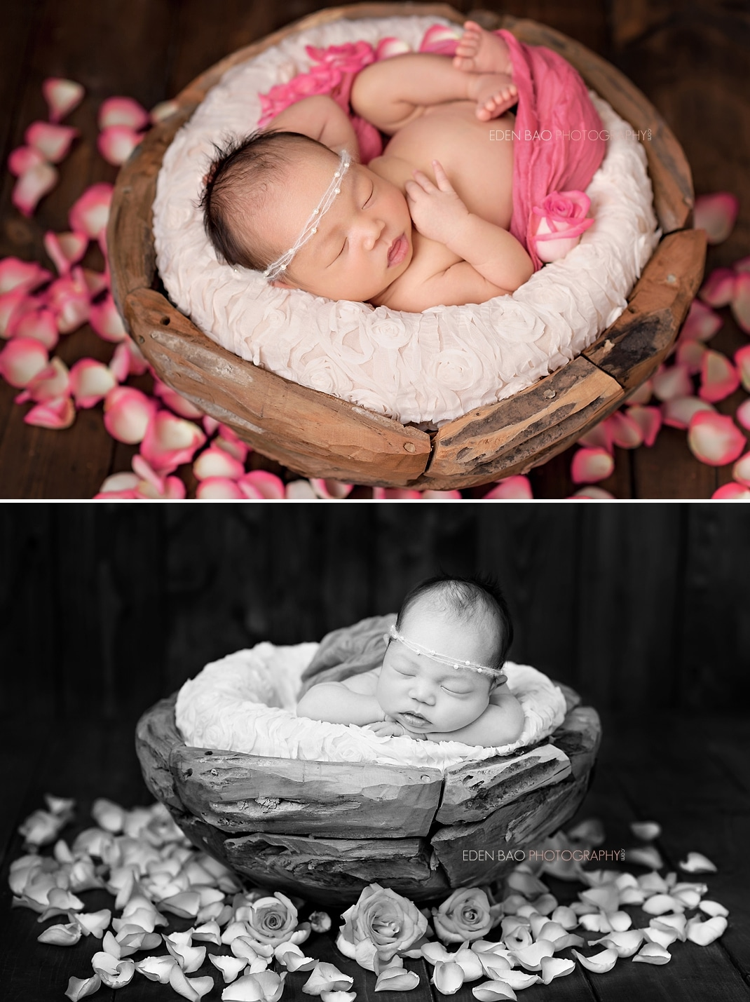 Newborn Photography Seattle pink roses