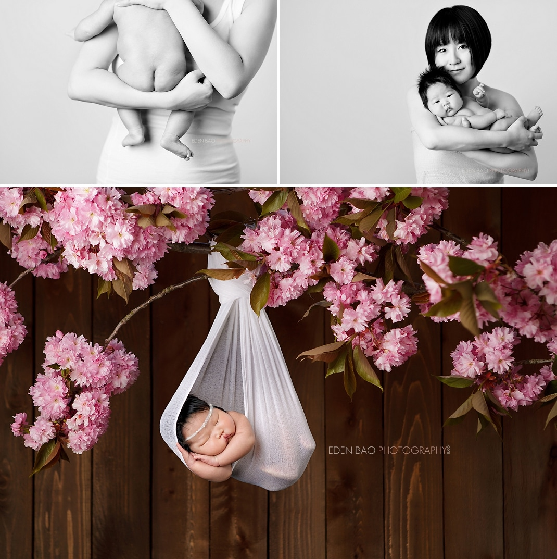 Newborn Photographer Bothell cherry blossoms branch