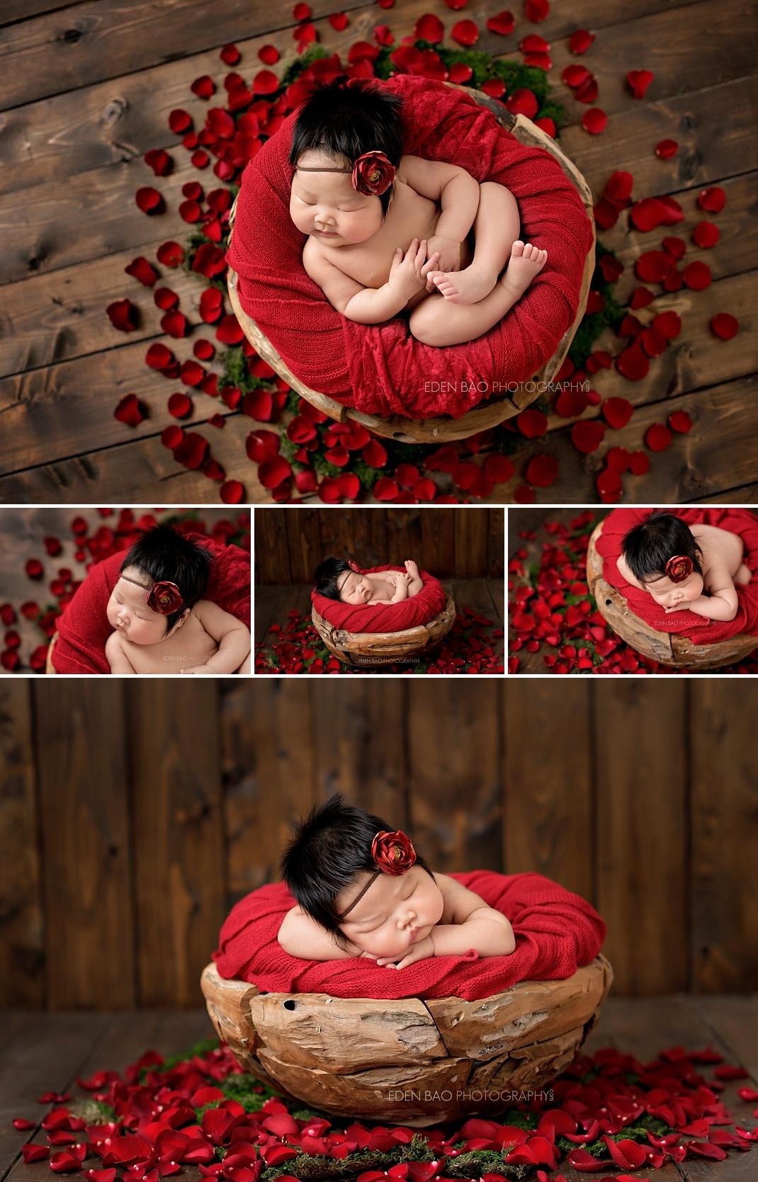 Newborn Photographer Bothell red rose petals