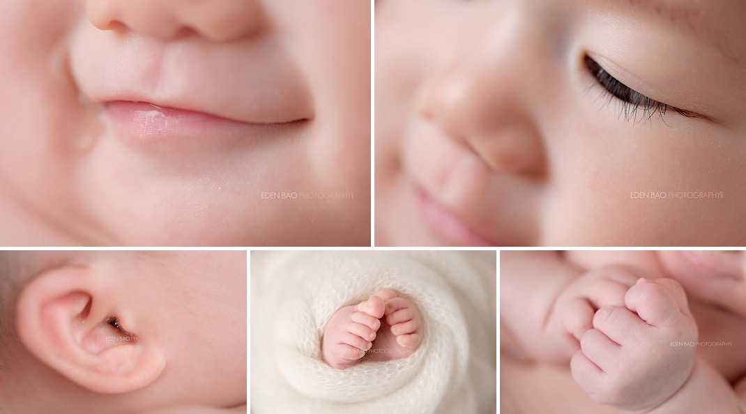 100 days Baby Photographer Mill Creek details