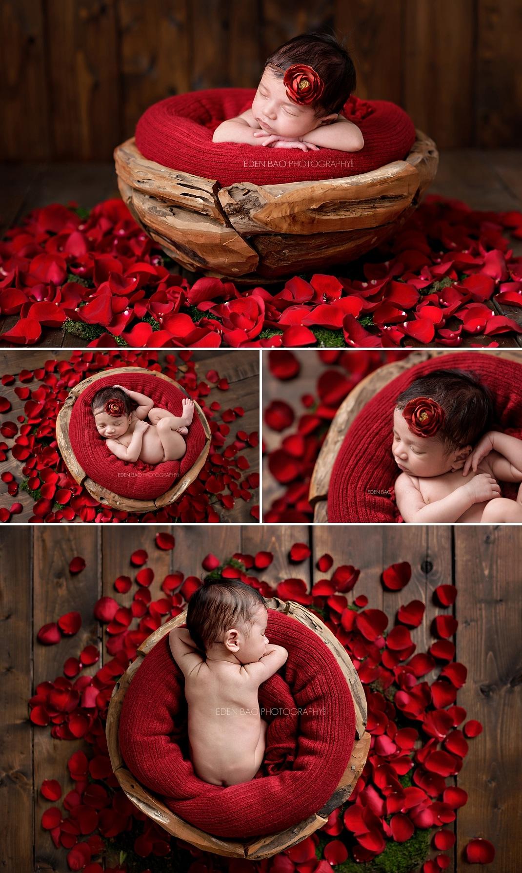 Kirkland WA Newborn Photographer red rose petals
