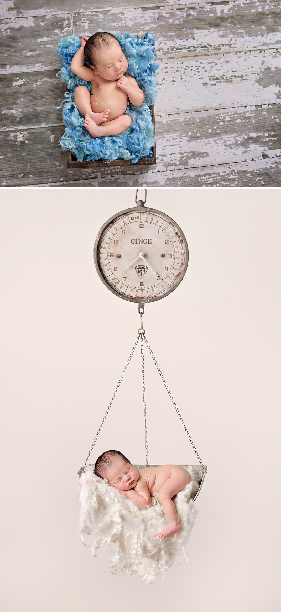 Baby Photography Seattle hanging scale