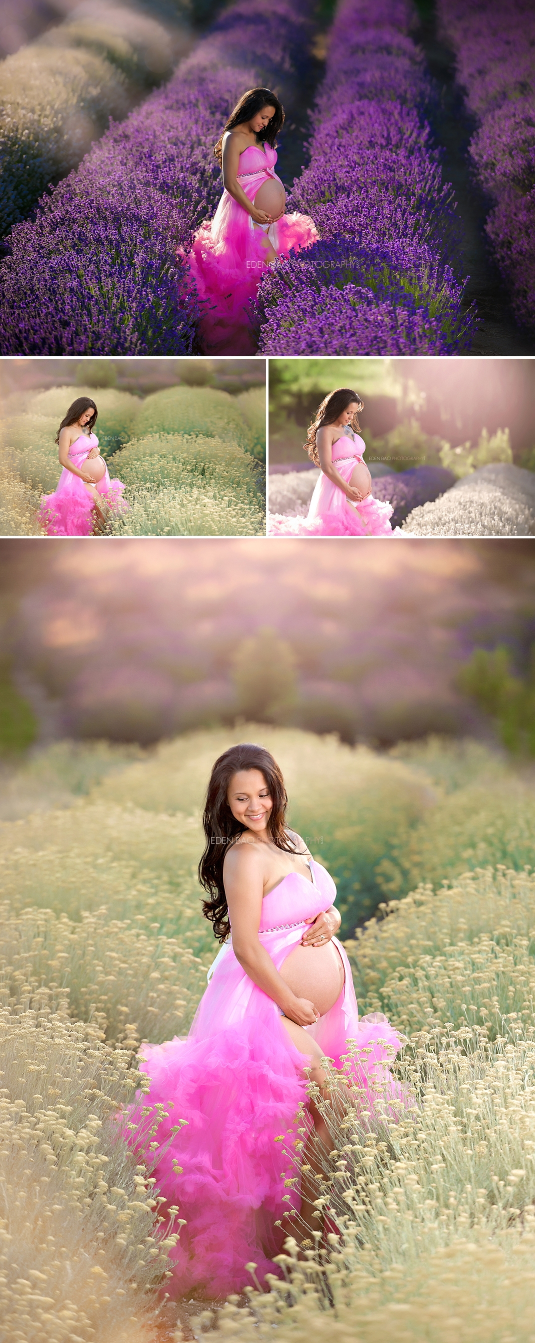 Best Maternity Photographer lavender field