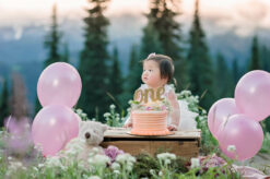 Rainier baby photographer cake smash