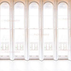 White Shutter Windows Overlay