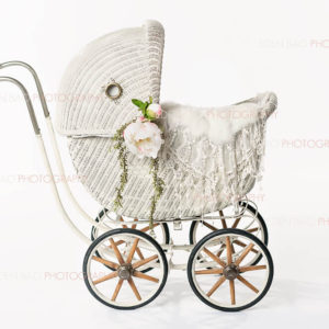 Vintage White Baby Carriage Overlay