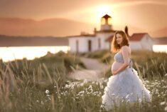 Adele Gray Maternity Gown Eden Bao