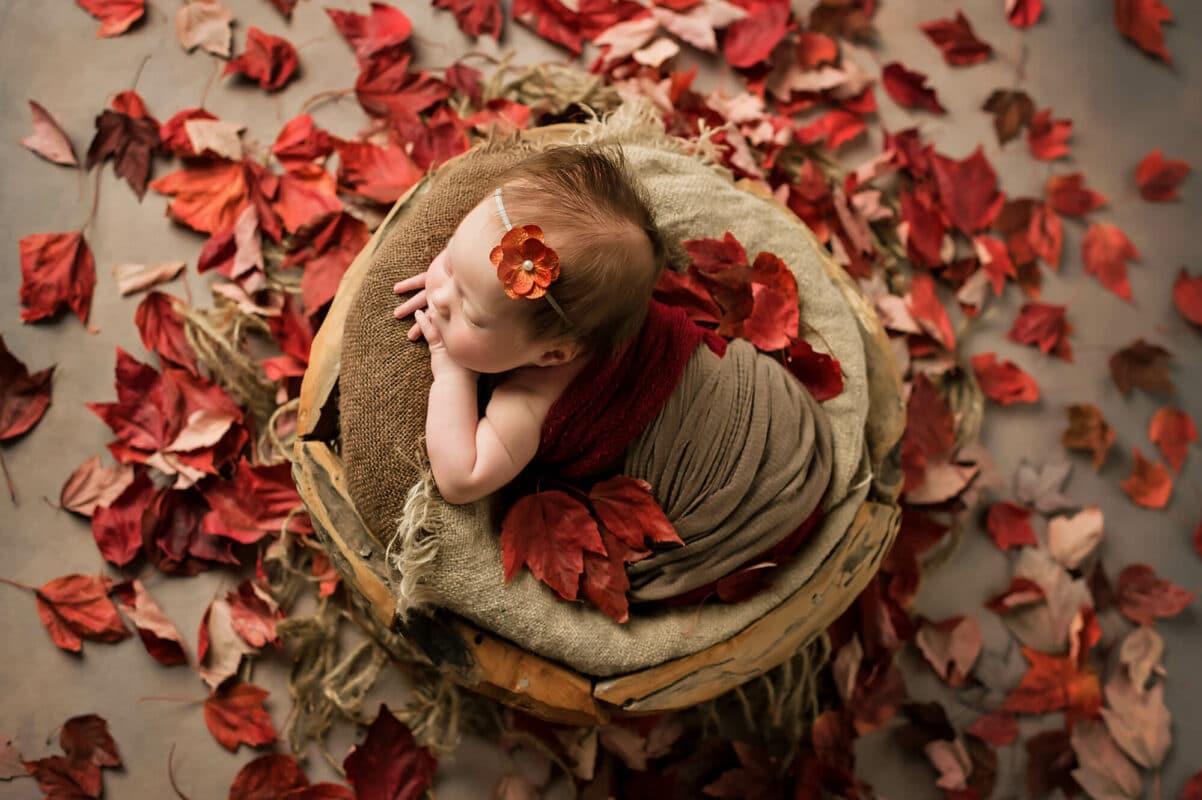 Autumn theme newborn Eden Bao