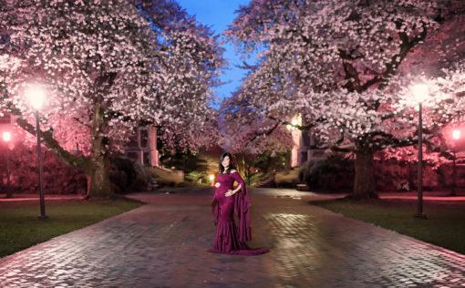 Cherry Blossom Melinda Burgundy Maternity Eden Bao