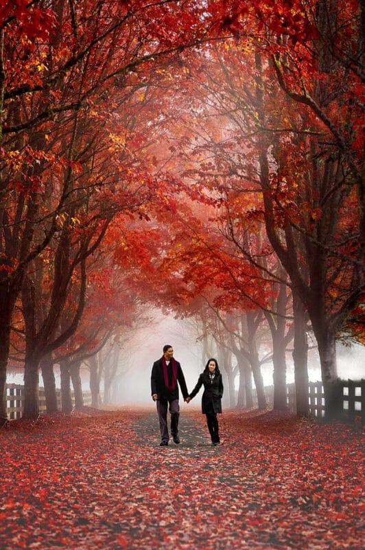 Couple Engagement Rockwood Farm By Eden Bao 800