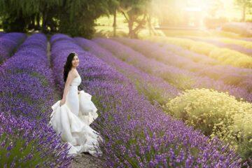 Lavender Farm Beauty Portraits Eden Bao