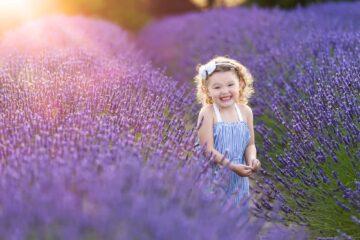 Lavender Farm Child Portrait by Eden Bao