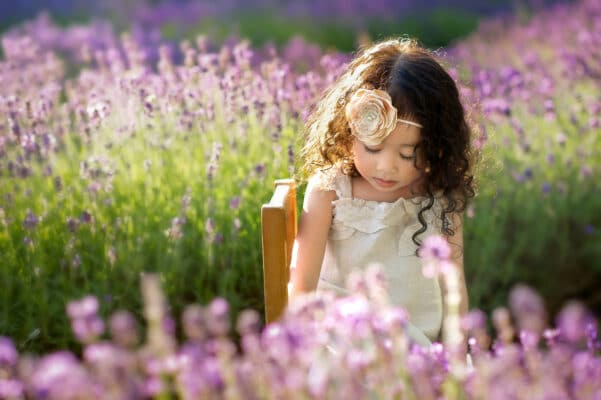 Lavender Farm Toddler Portrait by Eden Bao