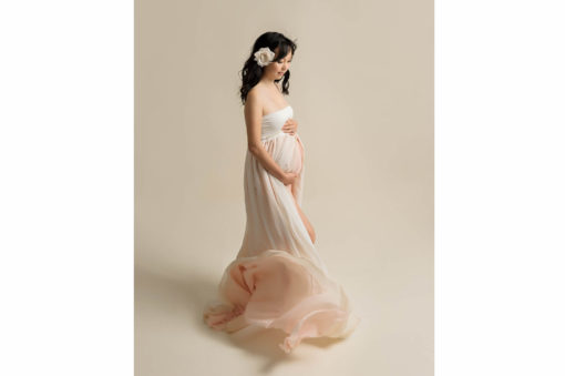 Maternity Studio Raquel Gown Ombre Pink Eden Bao