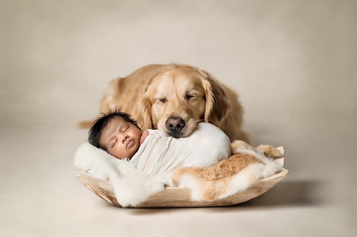 Newborn and Dog Eden Bao