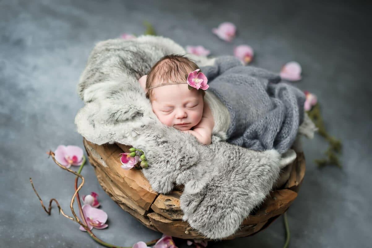 Pink Orchid Gray Backdrop Newborn Eden Bao