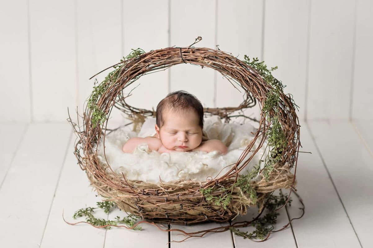 Willow Basket Newborn Eden Bao