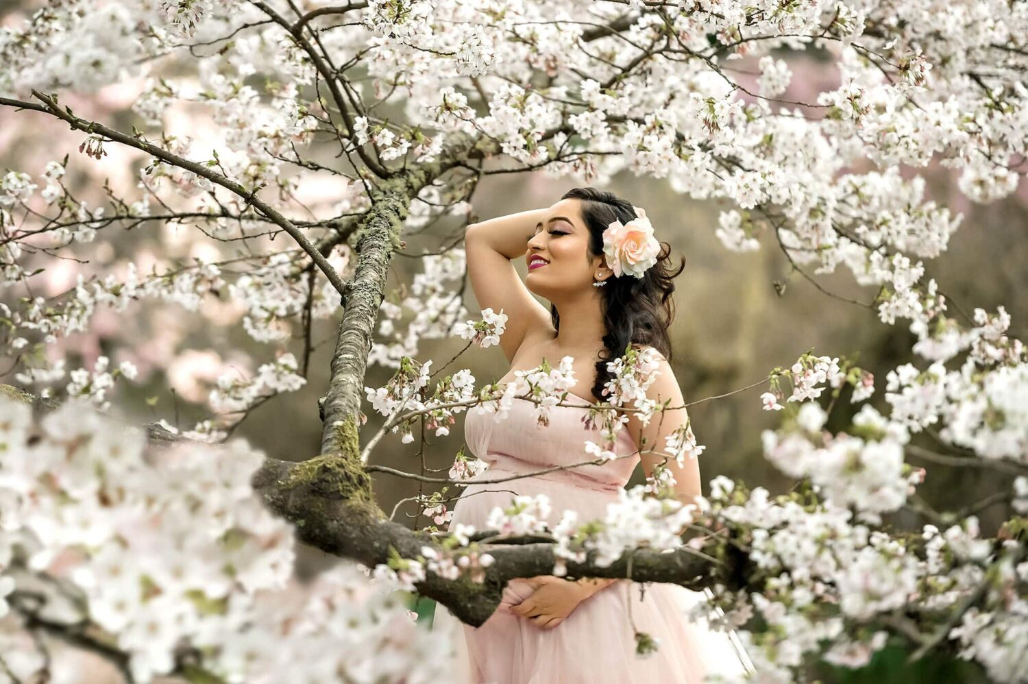 Seattle White Cherry Blossom Maternity Photography