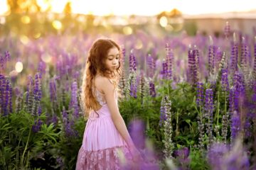 Lupine Flowers Seattle Family Photographer