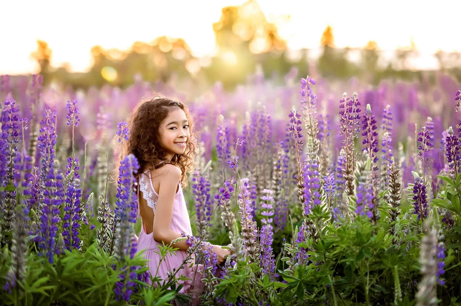 Lupine Wildflowers Seattle Family Photographer